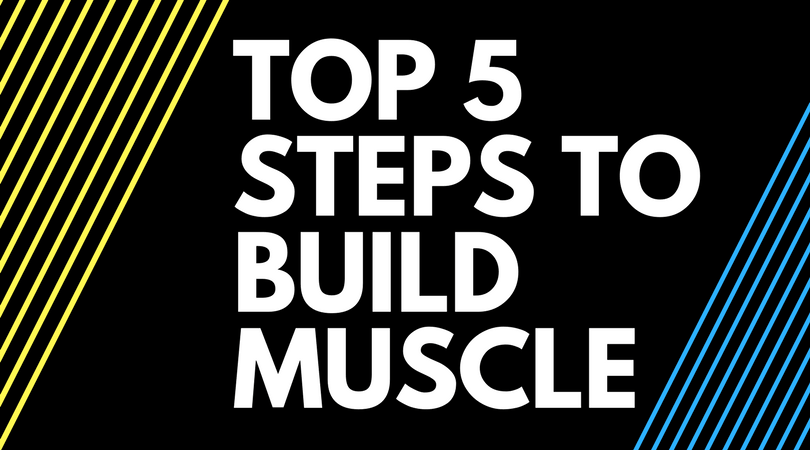 Top 5 Steps to Build Muscle